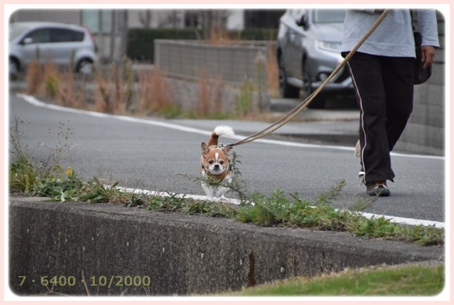 f:id:yasukazu01:20151127222148j:image