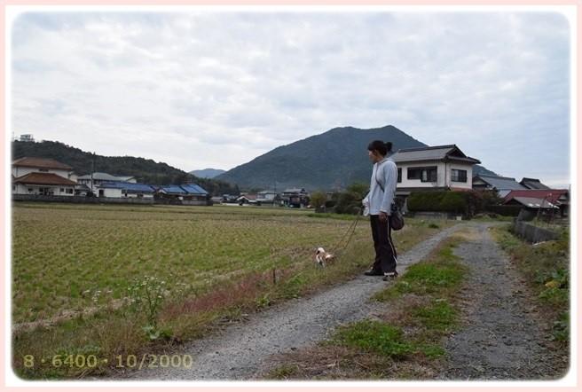 f:id:yasukazu01:20151127222403j:image