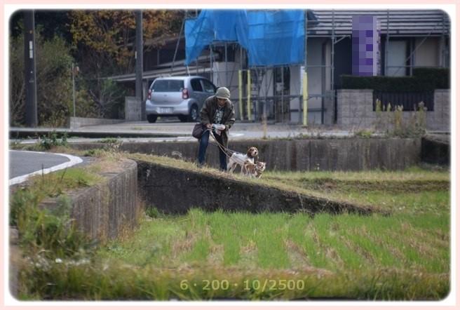 f:id:yasukazu01:20151129195314j:image