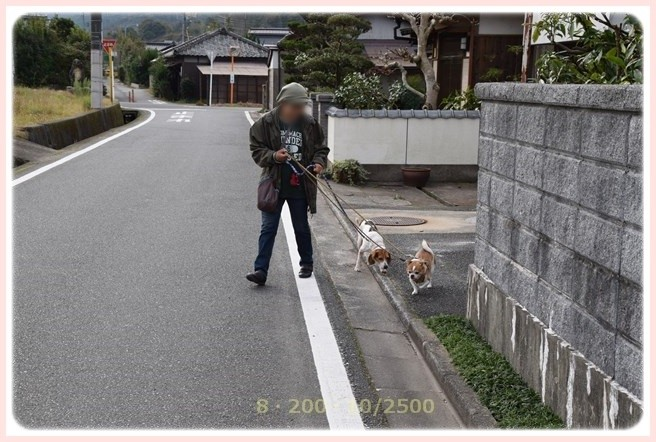 f:id:yasukazu01:20151129195828j:image