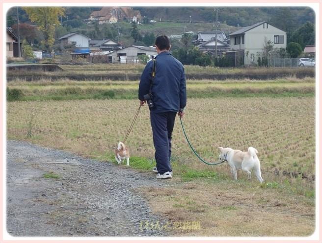 f:id:yasukazu01:20151129200227j:image