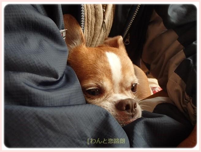 f:id:yasukazu01:20151129200952j:image