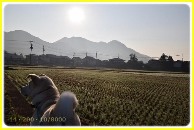 f:id:yasukazu01:20151201193033j:image