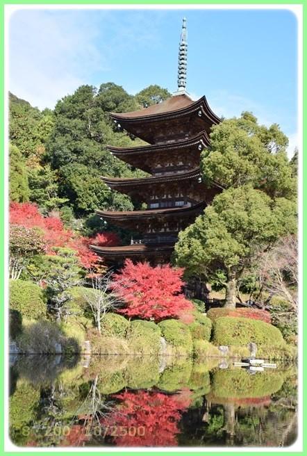 f:id:yasukazu01:20151215193223j:image