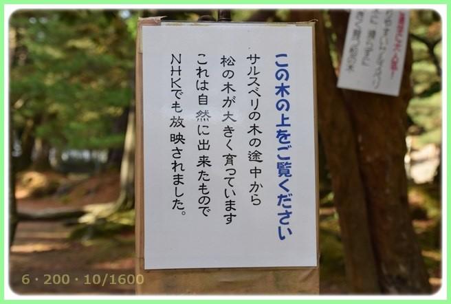 f:id:yasukazu01:20151215193552j:image