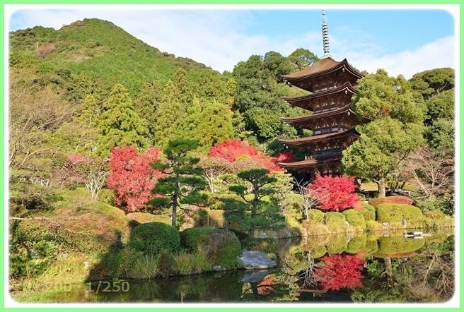 f:id:yasukazu01:20151215195859j:image