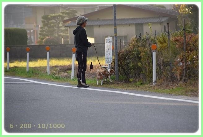 f:id:yasukazu01:20151215201141j:image