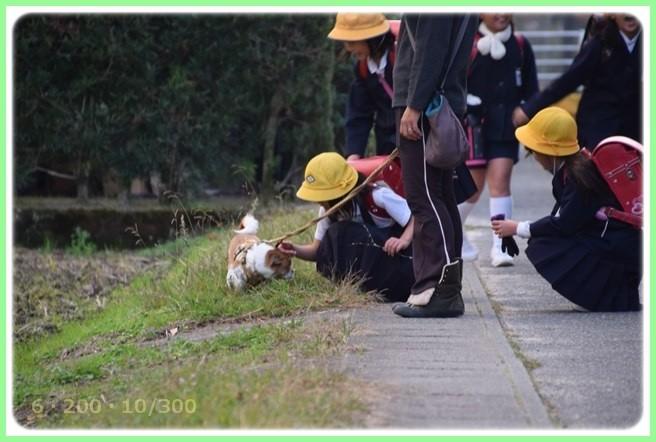 f:id:yasukazu01:20151215201337j:image