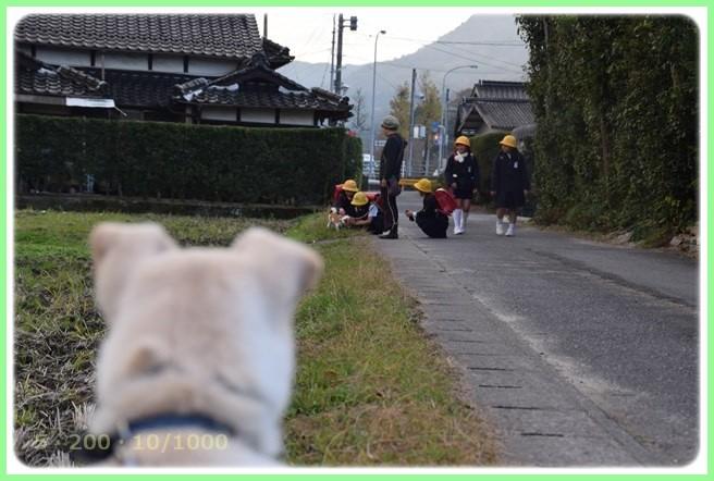 f:id:yasukazu01:20151215201412j:image