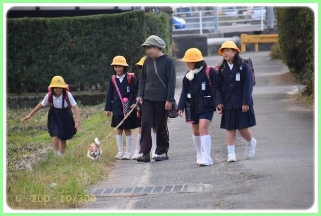 f:id:yasukazu01:20151215201530j:image