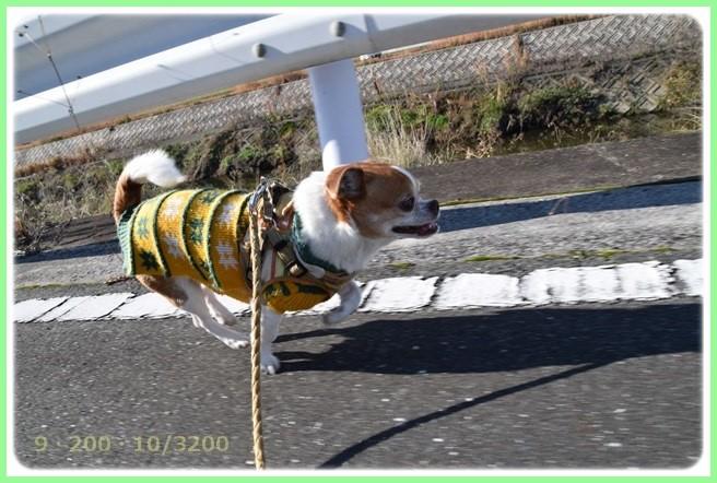 f:id:yasukazu01:20151219200133j:image