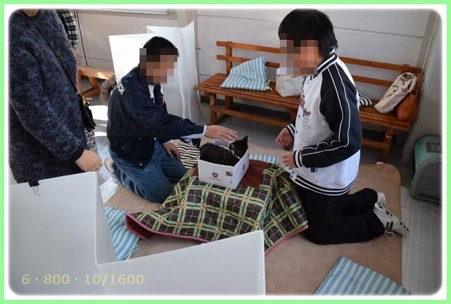 f:id:yasukazu01:20151219201606j:image