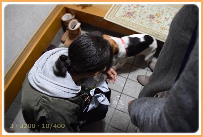 f:id:yasukazu01:20151223214711j:image