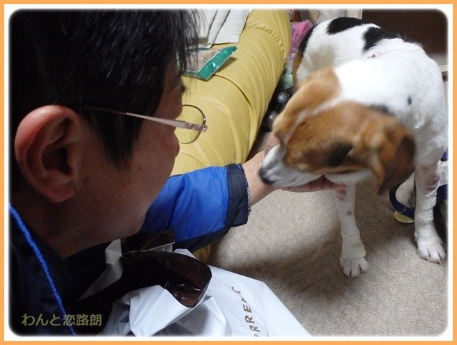 f:id:yasukazu01:20151223215529j:image