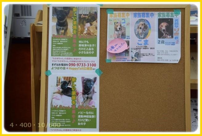 f:id:yasukazu01:20151227201136j:image