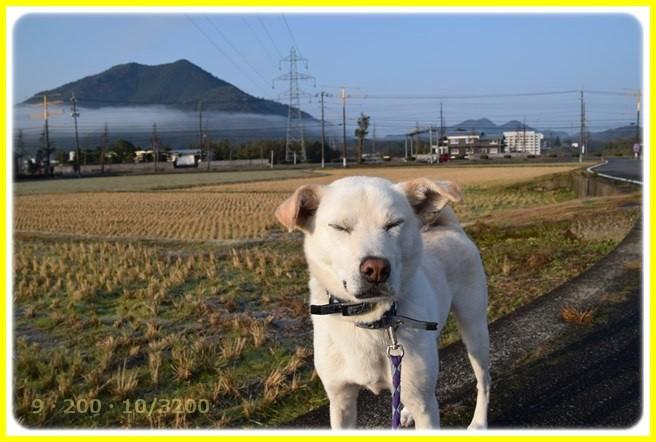f:id:yasukazu01:20160102174305j:image