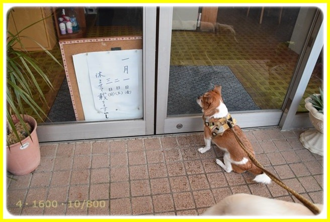 f:id:yasukazu01:20160102175828j:image