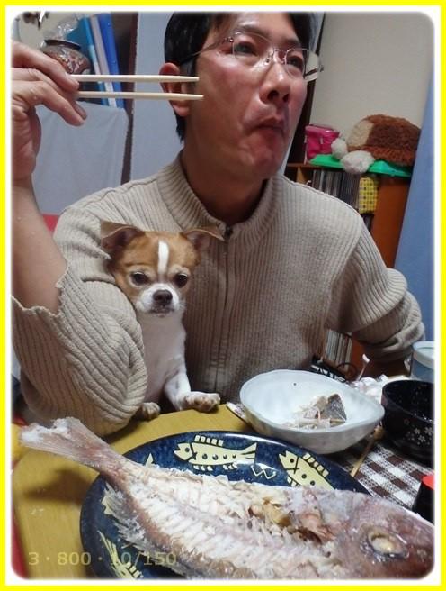 f:id:yasukazu01:20160102180557j:image