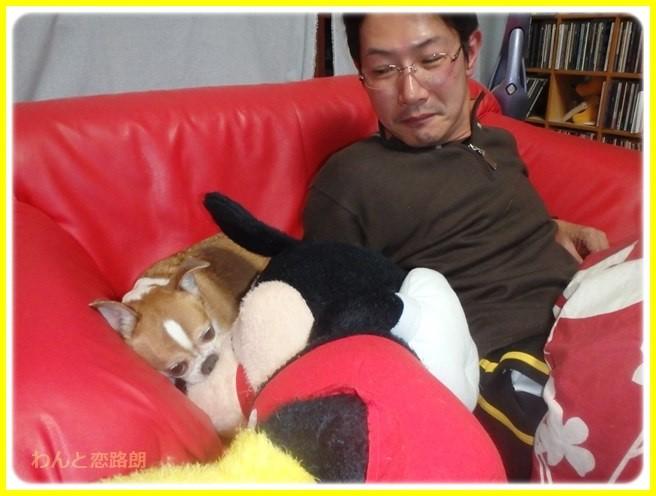 f:id:yasukazu01:20160103200321j:image