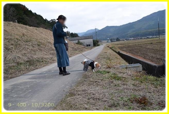 f:id:yasukazu01:20160107180124j:image