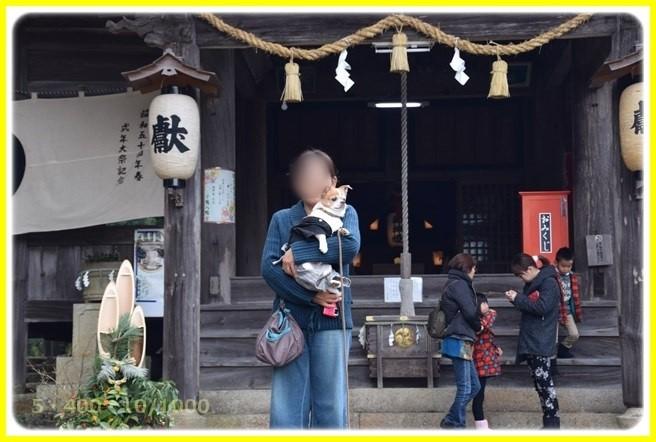 f:id:yasukazu01:20160107181240j:image