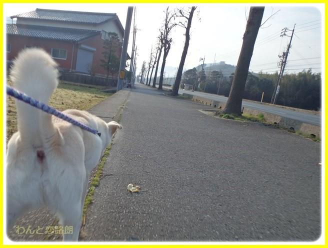 f:id:yasukazu01:20160111192627j:image