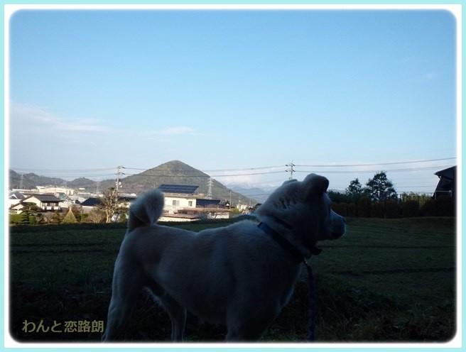 f:id:yasukazu01:20160114191546j:image