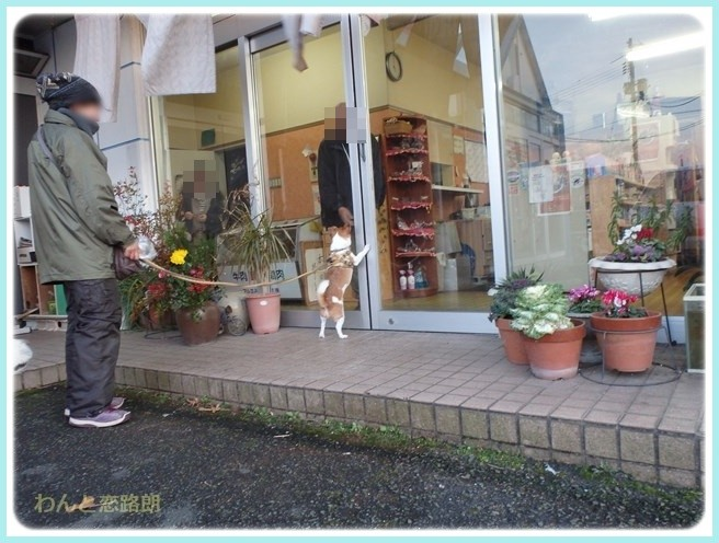 f:id:yasukazu01:20160114192958j:image