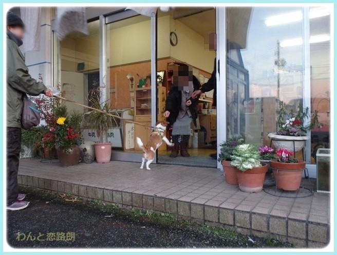 f:id:yasukazu01:20160114193117j:image