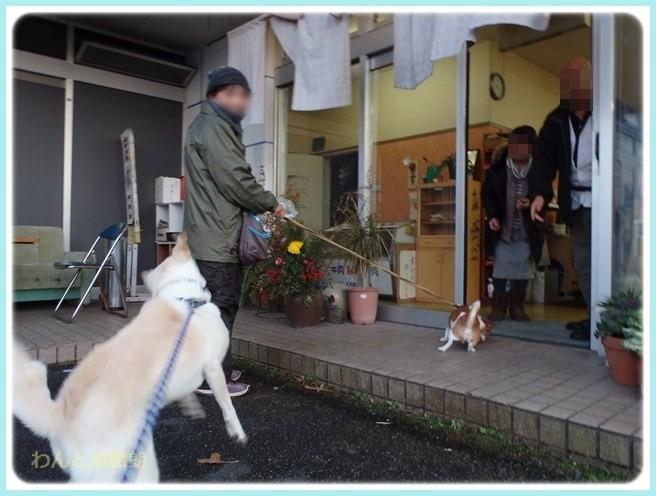 f:id:yasukazu01:20160114193353j:image