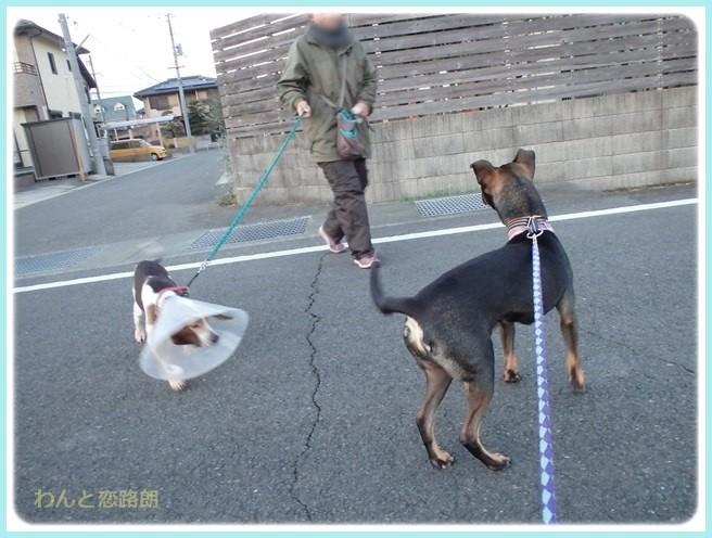 f:id:yasukazu01:20160114193616j:image