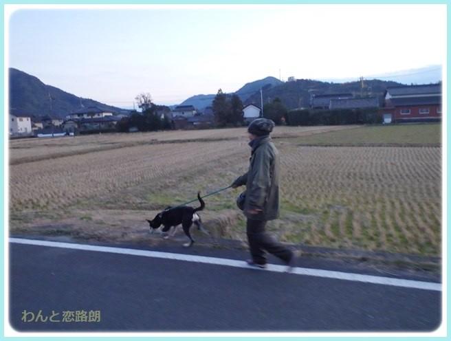 f:id:yasukazu01:20160114194613j:image