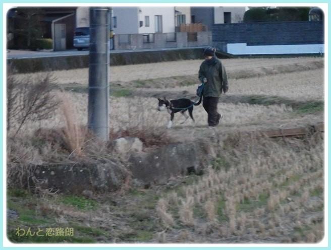 f:id:yasukazu01:20160114194719j:image