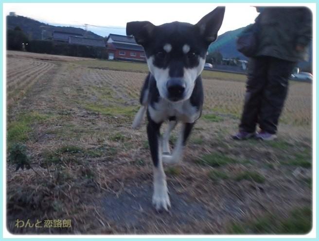 f:id:yasukazu01:20160114194914j:image