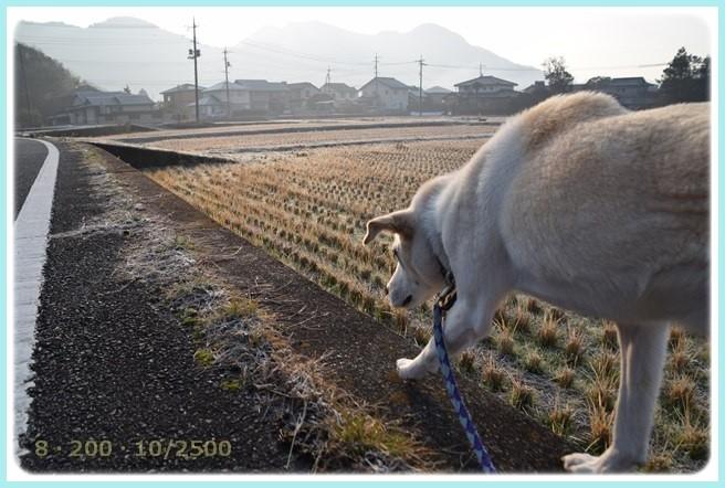 f:id:yasukazu01:20160116202827j:image