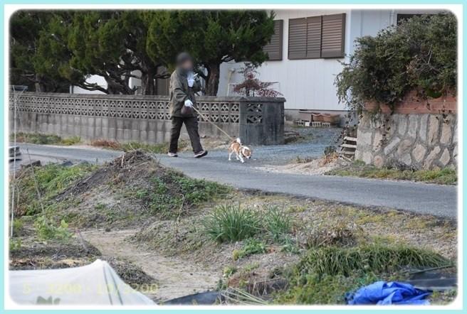 f:id:yasukazu01:20160116204215j:image
