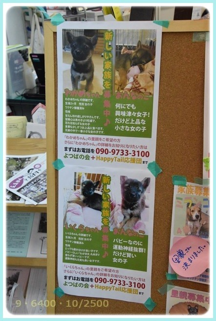 f:id:yasukazu01:20160118195545j:image