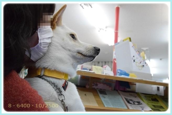 f:id:yasukazu01:20160118203304j:image