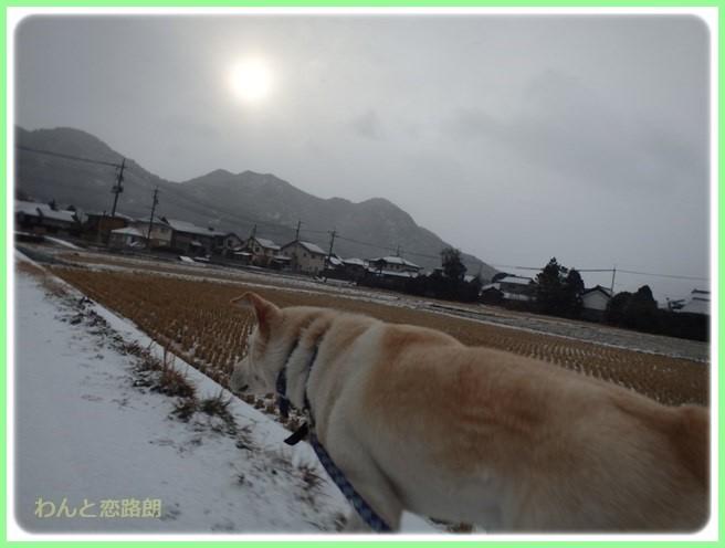 f:id:yasukazu01:20160124111444j:image