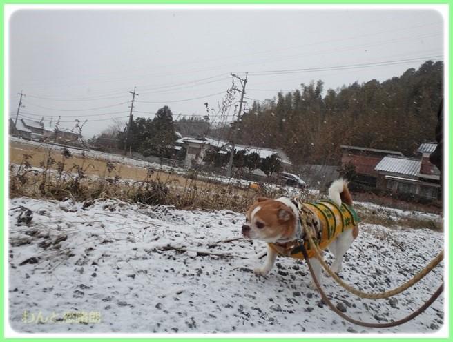 f:id:yasukazu01:20160124111916j:image