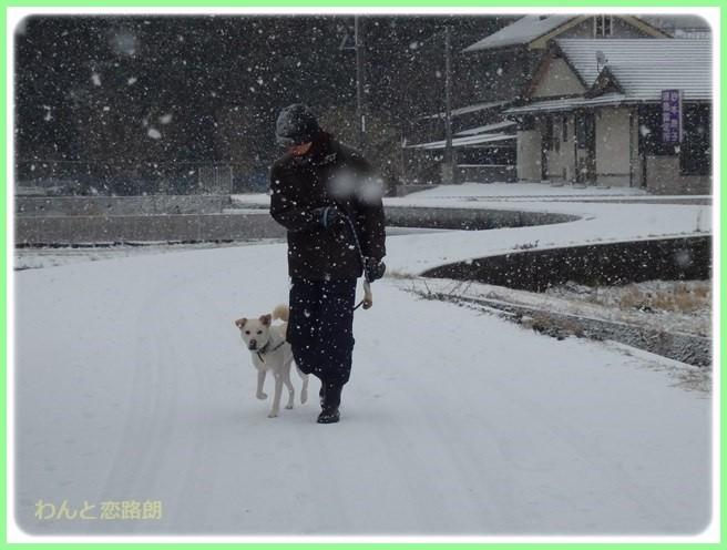 f:id:yasukazu01:20160124112434j:image