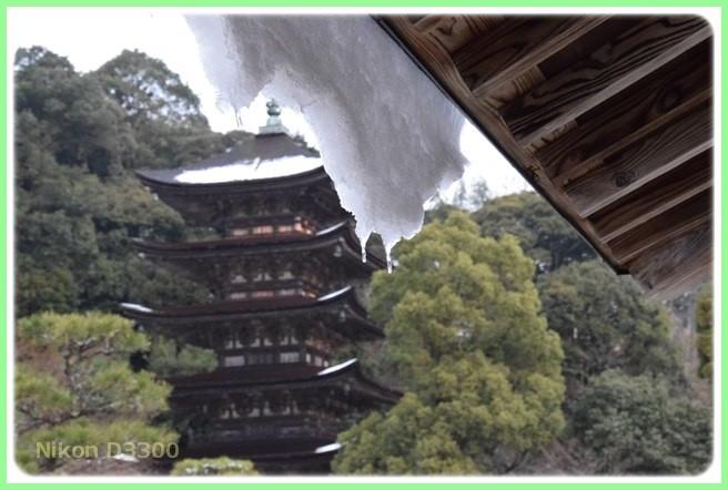 f:id:yasukazu01:20160124113423j:image