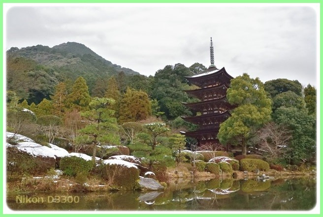 f:id:yasukazu01:20160124113620j:image
