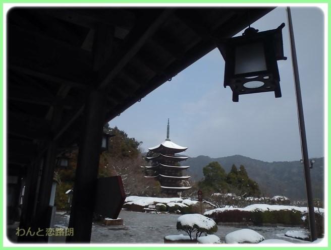 f:id:yasukazu01:20160129205358j:image