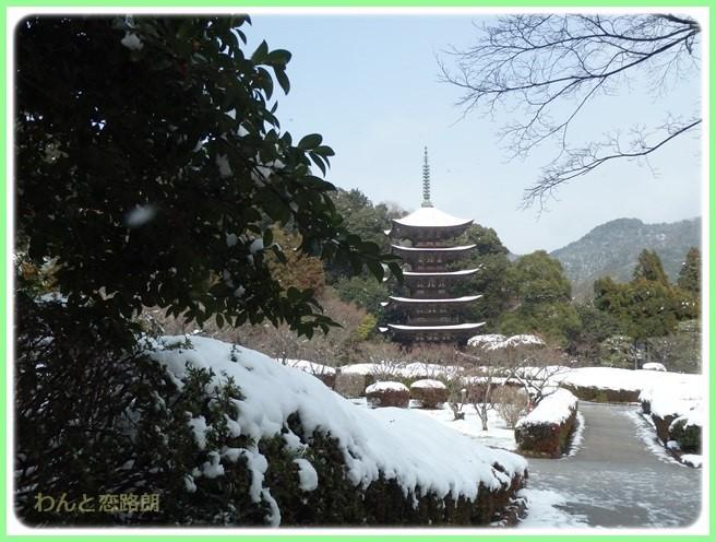 f:id:yasukazu01:20160129205609j:image