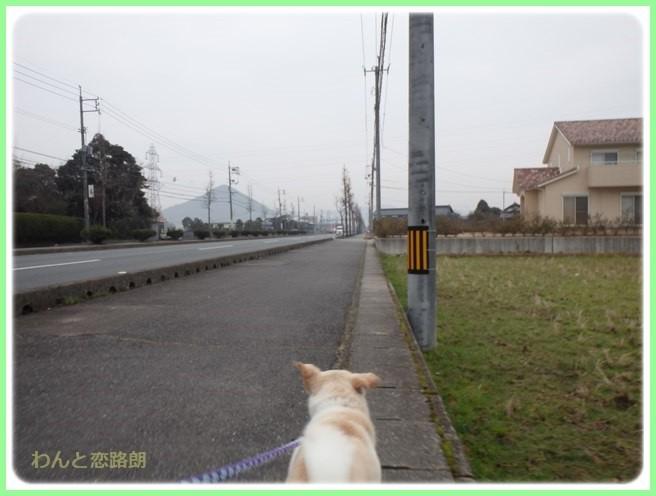 f:id:yasukazu01:20160201193443j:image