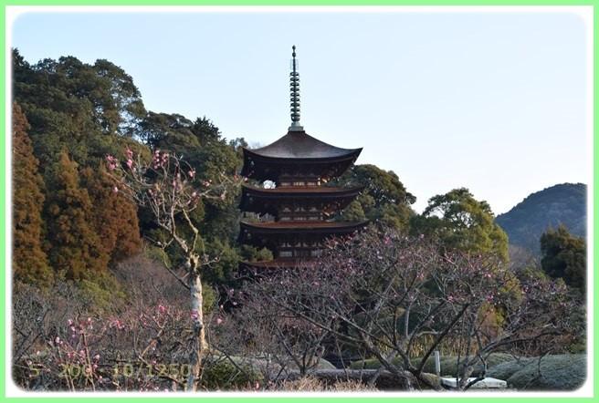 f:id:yasukazu01:20160206202145j:image