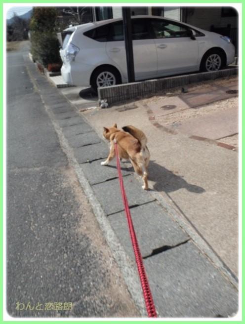f:id:yasukazu01:20160210184959j:image