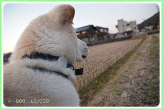 f:id:yasukazu01:20160210203229j:image