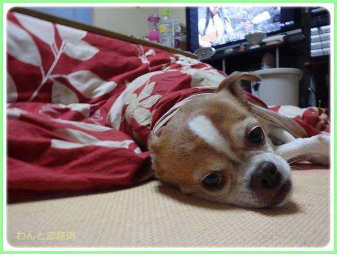 f:id:yasukazu01:20160210203357j:image